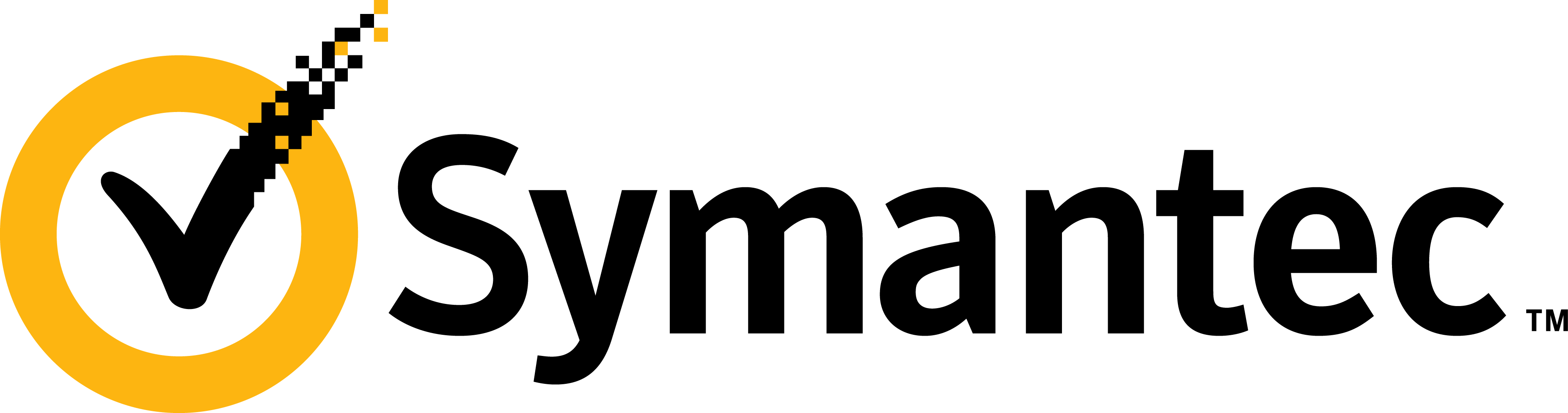 partners symantec fitsoftware software solution